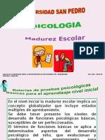 Diapositivas Madurez Escolar Usp