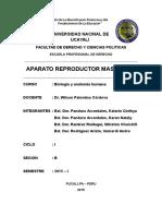 APARATO REPRODUCTOR MASCULINO 2.docx
