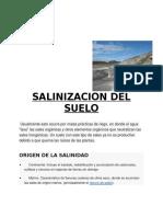 Salinizacion Del Suelo