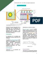ANTIFÚNGICOS PLUS.pdf