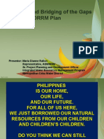 Critique and Bridging of Gaps of the NDDRM Plan.ppt