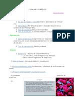 CopiadeFICHADELOSREINOSAnne.docx