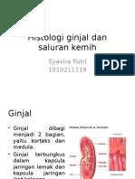 Histologi Ginjal Dan Saluran Kemih