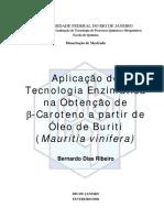 beta-caroteno-a-partir-de-oleo-de-buriti.pdf