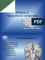 hemisferioscerebrales (1)