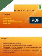 5.-Estructura-de-los-Ácidos-nucleicos.pdf