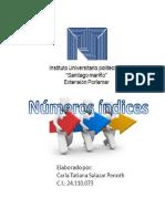 """Numeros Indices. """"Santiago Mariño"""" Con el Prof. Julian Carneiro"""