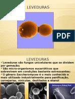 Aula3levedura(1)
