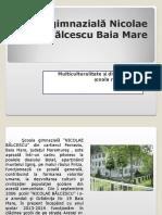 Şcoala gimnazială Nicolae Bălcescu Baia Mare_promovare_ed_romi_2014.ppt