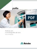 praticas em troca ionica.pdf