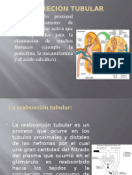 Farmacologia Expo.