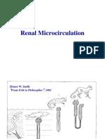 Renal Microcirculation