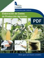 45918783 Elaboracion de Costos de Produccion Agricola