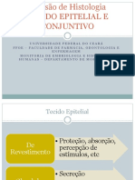 Tecido Epitelial, Glandular e Conjuntivo (1)