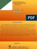 raul Revista  gestion de Calidad.pdf