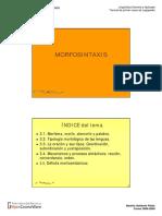 morfosintáxis de la lebgua