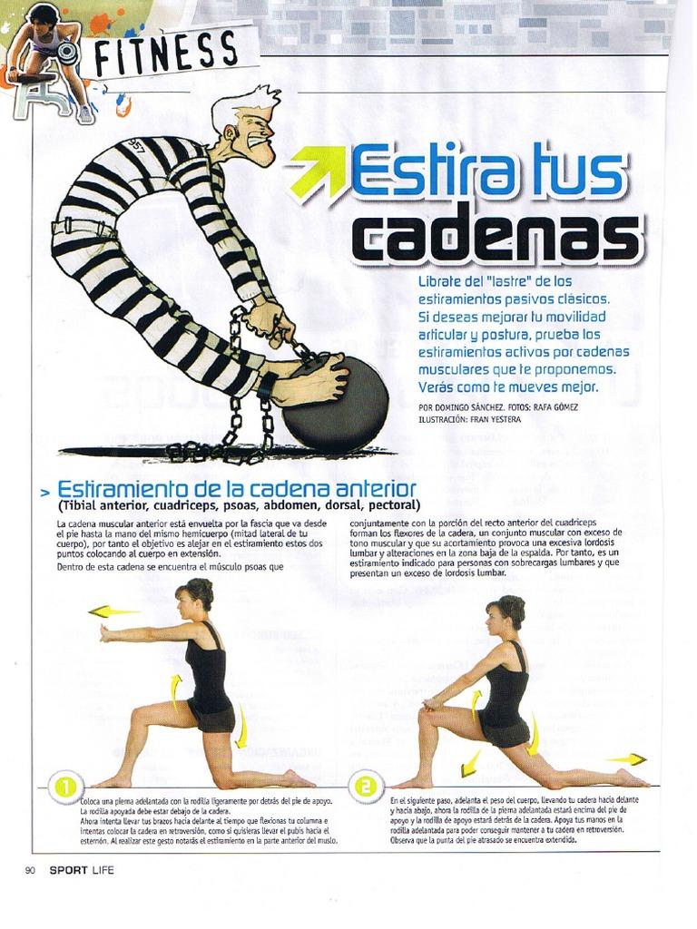 estiramientos de cadenas musculares pdf gratis