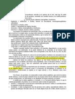 Resumen-I1