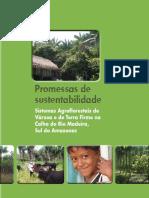 Promessas de sustentabilidade