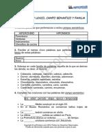 Ejercicio Campo Lexico Campo Semantico y Familia Lexica 239