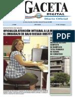 La Gaceta Digital _29_05_2009