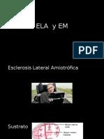 11-ELA, EM