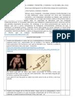 Webquest n.2. (Origen Del Hombre)