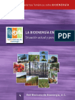 Bioenergia México
