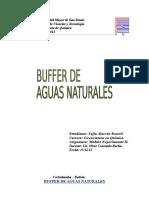 Capacidad_Buffer.docx