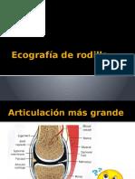 Ecografía de Rodilla