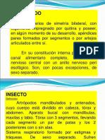1._generalidadesartropodos
