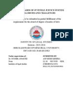 Arunesh LLM Report.doc