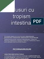 Virusuri Cu Tropism Intestinal Modificat
