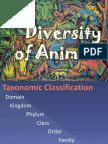 BIO 22 - Exercise 25 - Diversity of Animals (2)
