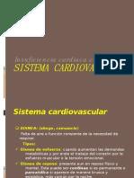 Ya Cardiovascular