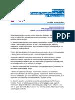 Sistema Atencional y Memoria Monografia Neurociencias Ayelen.tudisca