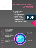 Sistem Penghantar Obat Liposom