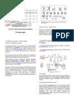 Citogenetica Humana y Aneuploidías