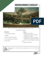 Castellano y Literatura  - 1erS_10Semana - MDP