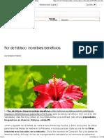 Flor de Hibisco_ Beneficios Increíbles - Bolsa de Mulher