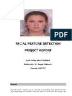 ffd_report.doc