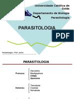 Protozoários II