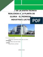 169269095-Visita-Tecnica-a-La-Planta-de-Gloria-El-Pedregal-jacky.docx