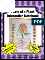 parts of a plant foldable word work activity
