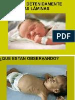 La respiración es el intercambio de oxígeno y.pdf