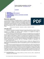 Decisiones Desafios Geopoliticos Chile