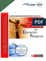 PLANIFICACION DCN.pdf