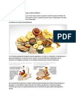 Cetosis, Proteinas y Carbohidratos