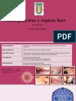 citomegalovirus y virus del epstein barr