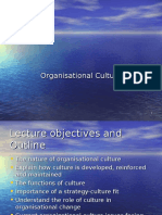 Culture chapter slides